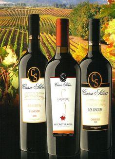 Casa Silva wine, Colchagua Valley, Chile. Chilean Wine, Chilean Food, Chilean Recipes, Latin American Food, Latin Food, Wine Auctions, Comida Latina, Easter Island, The Beautiful Country