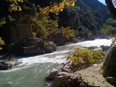 #aracthos #river #ipeiros #greece #awesome #calm #beauty #nature #naturelovers #nofilter #mysticism #awesome #ignature #greatphoto #power #instagreece #igwater by nikolas_liolios