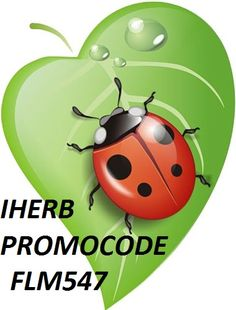 Lady bug on a leaf Baby Ladybug, Ladybug Art, Lady Bug, Rock Clipart, Clipart Baby, Leaf Clipart, Leaf Drawing, Clip Art, Rock Crafts