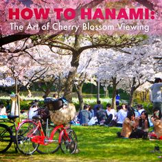 The Phenomenal Mama: {Japan Where To Stay In Osaka: Fraser Residences Nankai Japan Travel, Us Travel, Fraser Residence, Japan Post, Nara, Travel With Kids, Kyoto, Travel Guides, Things To Do