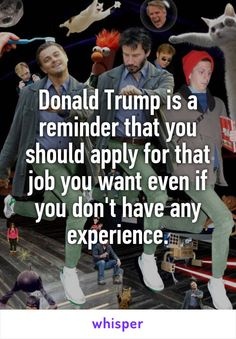 Donald Trump is a reminder that you should apply for that job you want even if you don't have any experience.