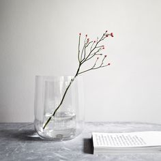 Menu Vase Vase. #Menu #artvoll #TopMarke www.artvoll.de