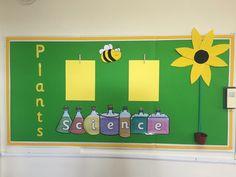 My Plants display board