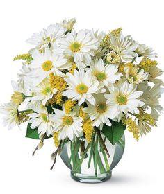 Simple Pleasures #october #birthflower  @freytagsflorist