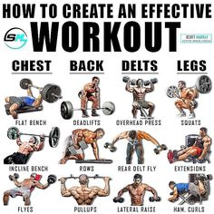 """Fitness   Bulking   Gains on Instagram: """"Follow @kile.greever  How many of these exercises do you do? @smurray_32 ➖ 👉🏼Chest: Flat barbell bench seems to be a foundational exercise…"""" Weight Training Workouts, Gym Workout Tips, Dumbbell Workout, Workout Fitness, Studio Workouts, Weight Training Programs, Kickboxing Workout, Gym Tips, Fitness Exercises"""
