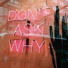 Don't ask why if it's none of your business. Just mind your own business. Remember that asking the wrong questions or knowing about things you shouldn't can get you hurt or killed.
