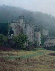 Gwrych Castle is a Grade I listed 19th-century country house near Abergele in Conwy county borough, Wales.