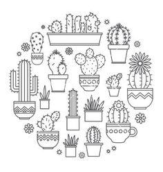 Sweet kactus