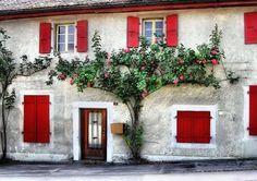 ♕ | In the village of Cheserex, Switzerland