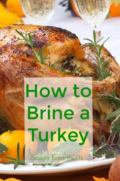to Brine a Turkey- a step-by-step guide for bringing turkey and a recipe for Thanksgiving Turkey.How to Brine a Turkey- a step-by-step guide for bringing turkey and a recipe for Thanksgiving Turkey. Juicy Turkey Recipe, Turkey Recipes, Best Turkey Recipe, Chicken Recipes, Duck Recipes, Pumpkin Recipes, Easy Recipes, Thanksgiving Dinner Recipes, Thanksgiving Turkey