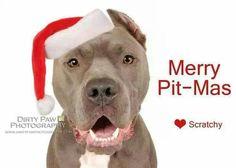 Merry Pit-Mas   :)