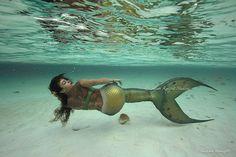 "688 Likes, 3 Comments - Nicole Carter - Mermaid Ariana (@mermaid_ariana) on Instagram: ""Photographer: Susan Knight Location: Bahama Islands Event: MPW 2015 Tattoo: @sweeney_tattoo…"""