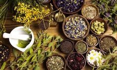 Obat Maag Alami Dari Tumbuhan – Alam sekitar sudah menyediakan berbagai pilihan, termasuk berbagai macam