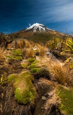 Mount Taranaki, North Island Go here on a day trip when in New Plymouth. What A Wonderful World, Beautiful World, Beautiful Places, New Zealand North, New Zealand Travel, Tasmania, Amazing Nature, Wanderlust, Mother Nature