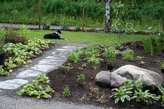 Kotopihalla Garden Paths, Garden Inspiration, Stepping Stones, Yard, Outdoor Decor, Plants, Stair Risers, Patio, Plant