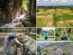 Le Bali Authentique excursion en 4x4