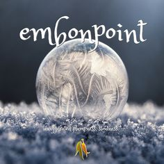 Beautiful words - embonpoint - exaggerated plumpness, stoutness Beautiful Words, Christmas Bulbs, Holiday Decor, Tone Words, Christmas Light Bulbs, Pretty Words, Beautiful Horses