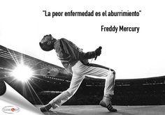"""""""La peor enfermedad es el aburrimiento."""" Freddie Mercury  #frases"""