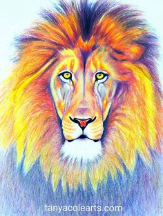 Lion FINE ART PRINT 'Strength Within Me' ~ A3 * Limited Edition * by Tanya Cole by TanyaColeArt on Etsy