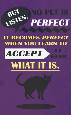 no pet is perfect night vale - Google Search