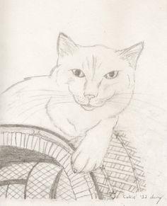 Ragdoll Cat Portrait by SunnyArts.deviantart.com on @deviantART