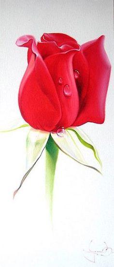 🌻✿ ❀ ❁✿ For more great pins go to Beautiful Rose Flowers, Love Flowers, Watercolor Flowers, Watercolor Art, Rose Art, Botanical Art, Printable Wall Art, Pink Roses, Flower Art