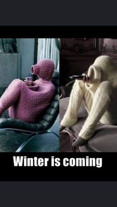 Funny Memes, Jokes, Try Not To Laugh, Funny Clips, Winter Is Coming, Funny Cute, Funny Photos, True Stories, I Laughed