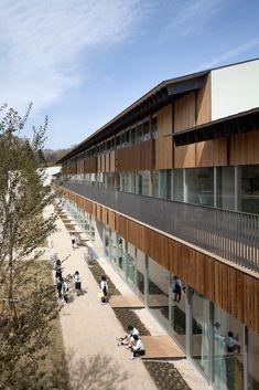都市の木の学校を目指す、帝京大学小学校