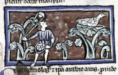 Bodleian Library, MS. Bodley 533, Folio 17v