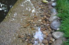 1000 Ideas About Preformed Pond Liner On Pinterest Pond Liner Epdm Pond Liner And Plastic