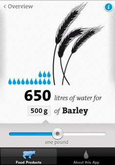 Virtual Water iPhone app UI design.