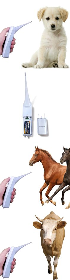 Pet Supplies: Thermometer Digital Pet Cat Dog Cow Birds Horse Animal Temperature Fastly New BUY IT NOW ONLY: $30.18