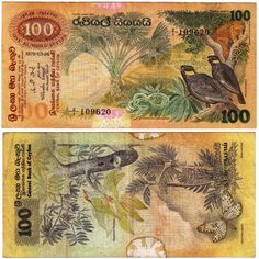 Sri Lanka 100 Rupees add 4 million Old Coins, Rare Coins, Sri Lanka, Money For Nothing, Folding Money, Money Notes, Old Money, Coin Collecting, Stamp