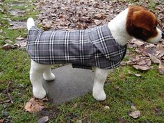 Dog Coat  Grey and pink Plaid and Dog Coat  Size by KozyCanines, $35.00
