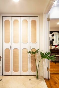 suede paneled doors with french brass tacks