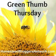 Green Thumb Thursday Linkup