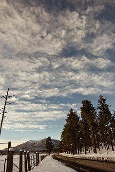 jessbend:  Mount Elden. Flagstaff, AZ