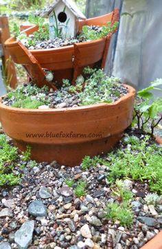Make your own #fairygarden out of broken terracotta pots...http://www.bluefoxfarm.com/terracotta-fairy-garden.html