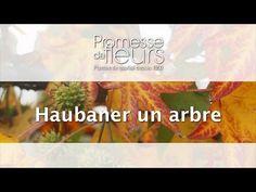 Promesse de Fleurs - YouTube Comment Planter, Plantation, Planters, Gardens, Plant, Window Boxes, Pot Holders, Flower Planters, Pots