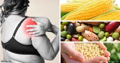 El maíz, el anacardo y la soya no fermentada son algunos de los alimentos más problemáticos que contienen lectina, que son proinflamatorios, inmunotóxicos, neurotóxicos y citotóxicos.