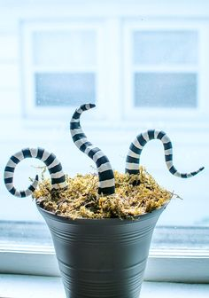 DIY: Beetlejuice Potted Sand Worm ⋆