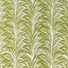 zebra fern bottle green crop.jpg