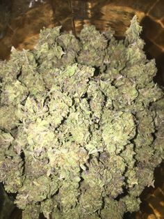 Buy OG Kush is an American marijuana classic, a Southern California original with some of the highest THC levels in the world. With a sativa/indica. Cannabis Vape, Cannabis Seeds Online, Cannabis Seeds For Sale, Cannabis Plant, Medical Marijuana, Growing Marijuana Indoor, Cannabis Growing, Overnight Delivery, Overnight Shipping