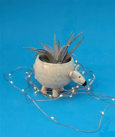 Small Sheep Planter, Succulents,Air Plants, Joyful Gift, Ready to Ship by CindySearles on Etsy