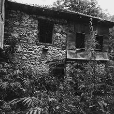 hitsavagejofka/2016/11/26 17:48:52/I fell in love with this place.. . . . . . . . #aesthetic#tumblrfeed#village#photography#oldhouse#house#blackandwhite#white#black#blackgrunge#darkgrunge#grunge#pale#am#alexturner