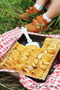apple cake in the nature.