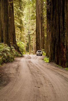 Wonderful Cali - http://www.travelandtransitions.com/destinations/destination-advice/north-america/