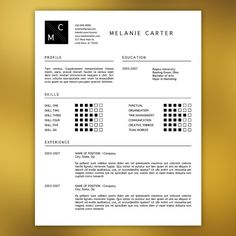 Creative Resume Template Editable in MS Word by ScribbledNapkin