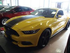 St Louis Ford Dealers >> 71 Best At Our Houses Images Ford Car Ford Victoria Police