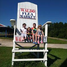 Large Chair | Waldo, FL | SimpleKids.net